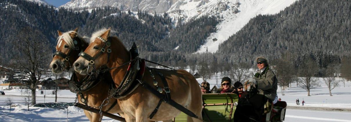 Pferdeschlittenfahrt auf der Hochebene