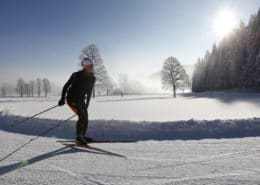 Cross country skiing in the morning light