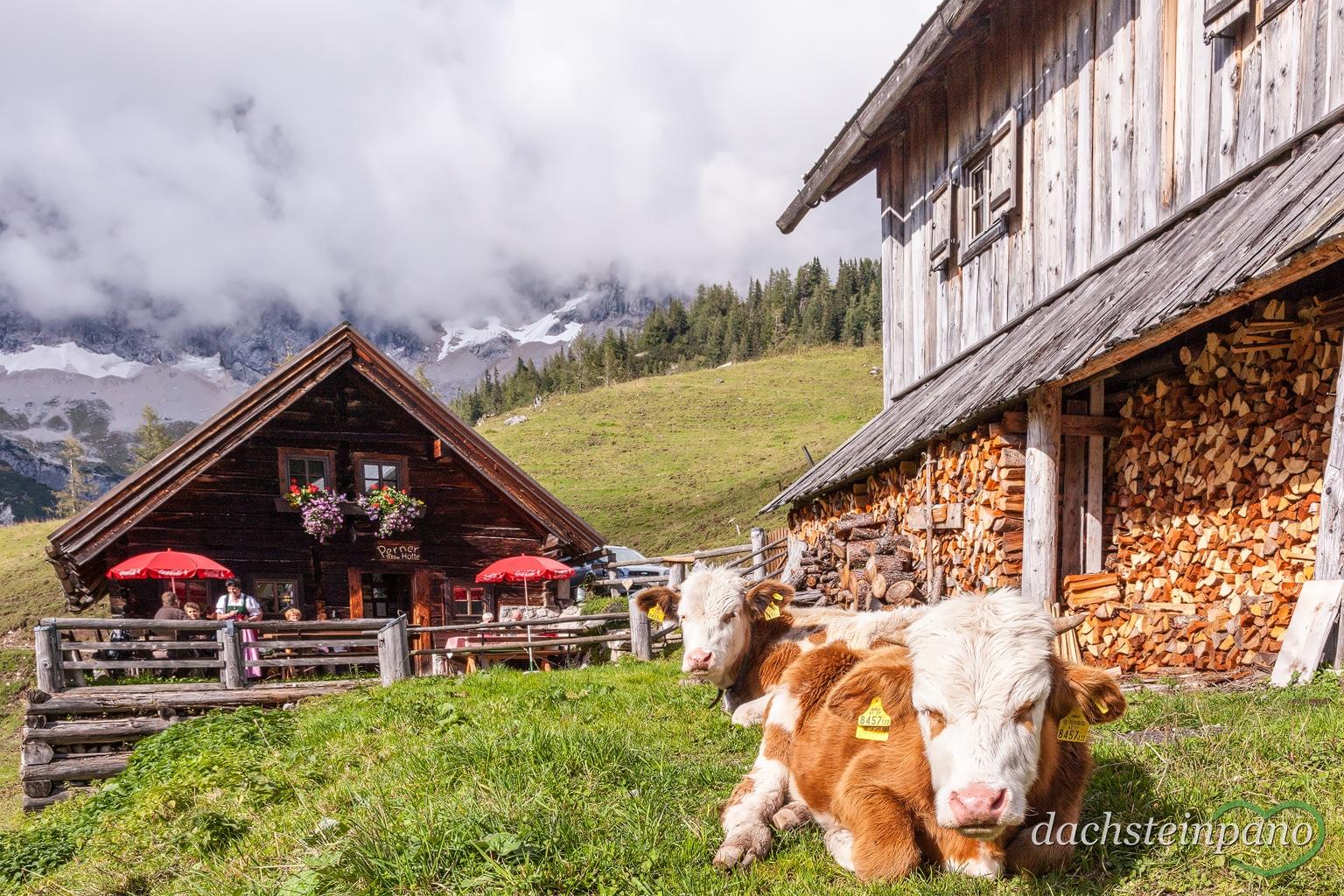 Urlaub in Ramsau am Dachstein