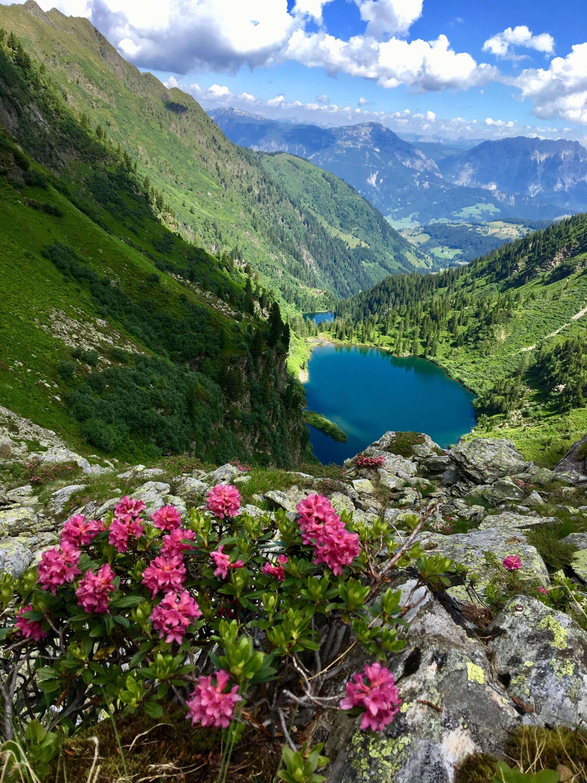Almrausch + Bergseen